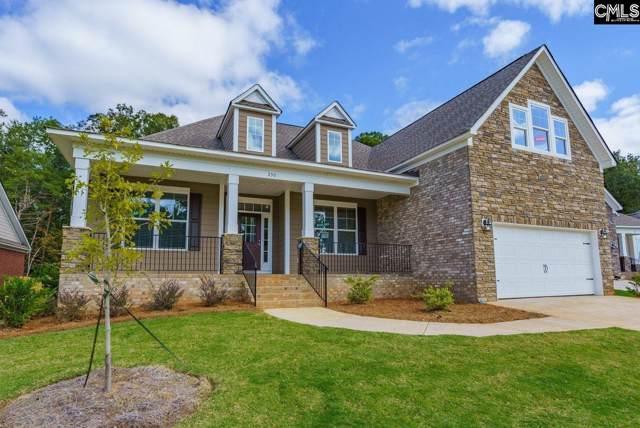 230 Regatta Forest Drive, Columbia, SC 29212 (MLS #481023) :: Home Advantage Realty, LLC