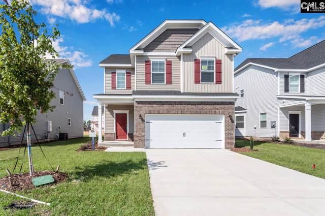 251 Ashewicke Drive, Columbia, SC 29229 (MLS #481226) :: Loveless & Yarborough Real Estate
