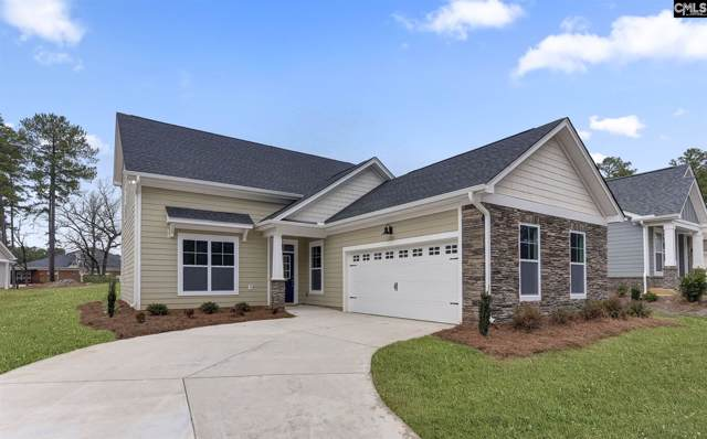 114 Bowyer Lane, Chapin, SC 29036 (MLS #481314) :: EXIT Real Estate Consultants