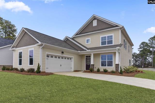 124 Bowyer Lane, Chapin, SC 29036 (MLS #481316) :: EXIT Real Estate Consultants