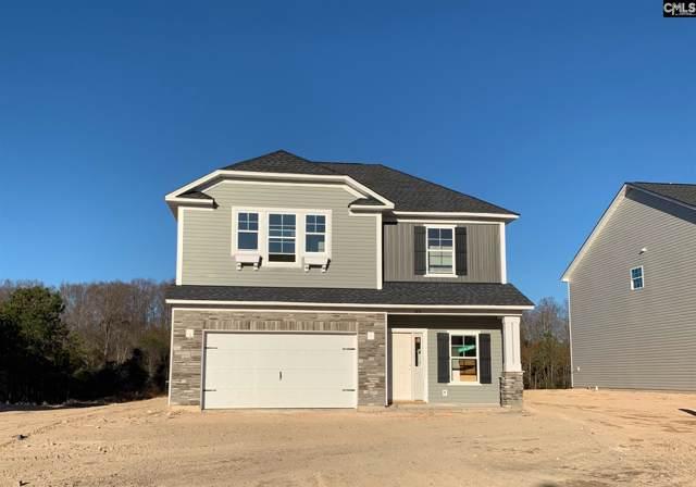 149 Drummond Way, Lexington, SC 29072 (MLS #481736) :: EXIT Real Estate Consultants