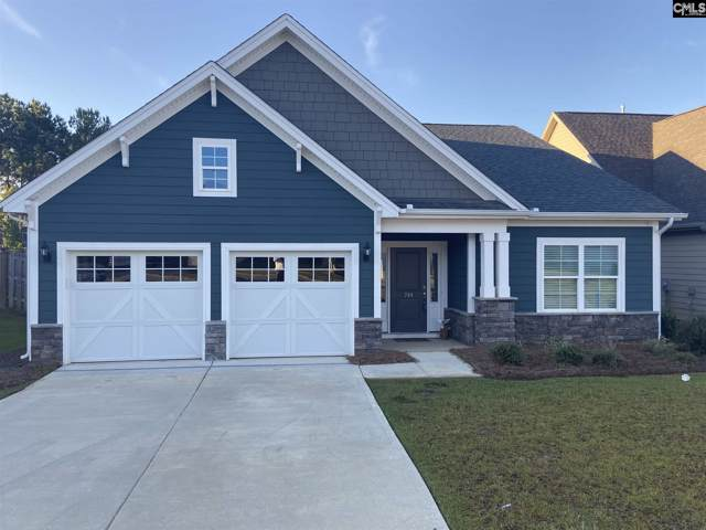 744 Xander Way, Chapin, SC 29036 (MLS #482017) :: EXIT Real Estate Consultants