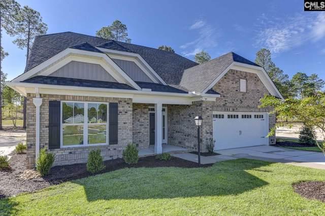 114 Backspin Drive, Elgin, SC 29045 (MLS #482081) :: Home Advantage Realty, LLC