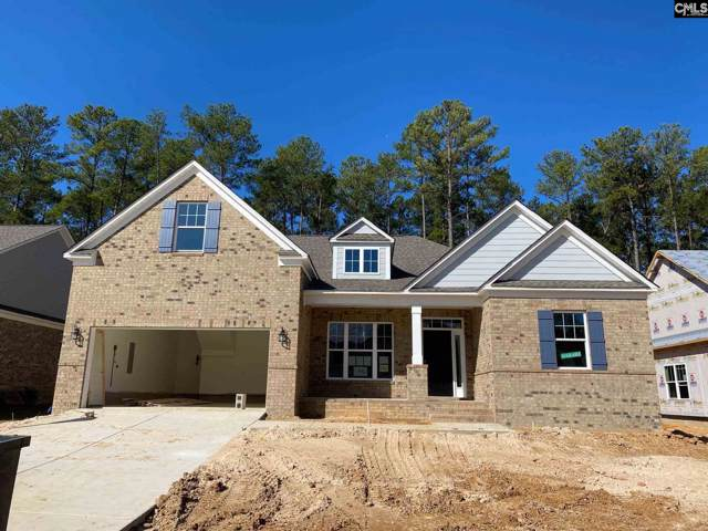 228 Cedar Hollow Lane, Irmo, SC 29063 (MLS #482806) :: The Meade Team