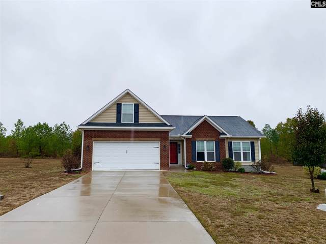 28 Carina Lane, Lugoff, SC 29078 (MLS #482945) :: EXIT Real Estate Consultants