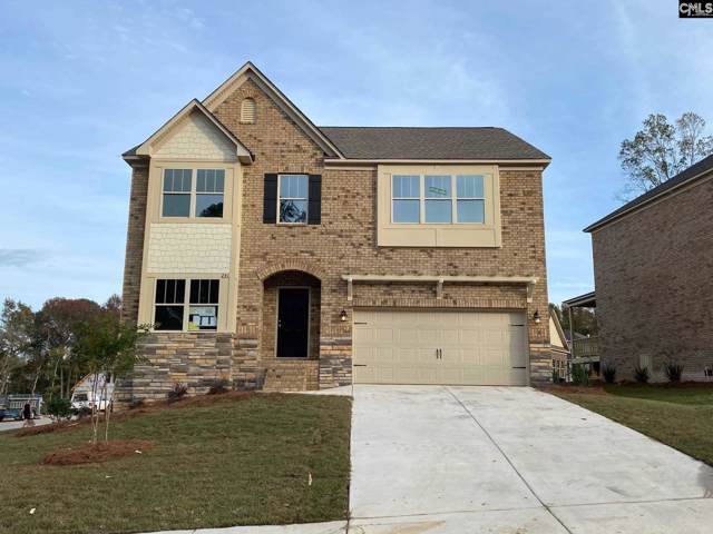 241 Cedar Hollow Lane, Irmo, SC 29063 (MLS #483008) :: The Meade Team