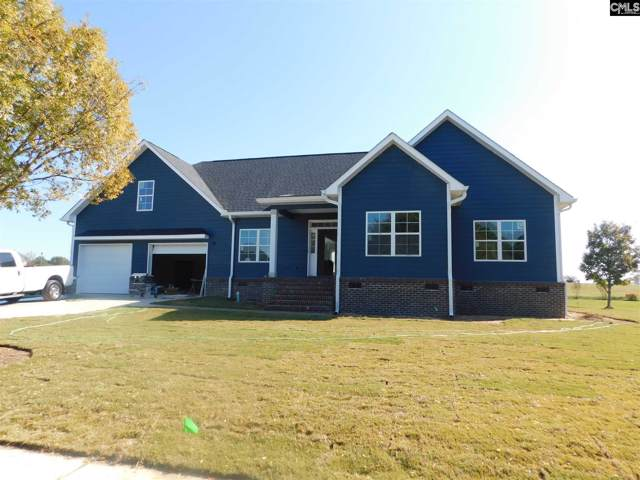 205 Cottontail Lane, Batesburg, SC 29006 (MLS #483113) :: The Meade Team