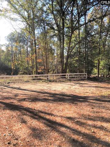 1164 Parrish Road, Leesville, SC 29070 (MLS #483344) :: The Olivia Cooley Group at Keller Williams Realty