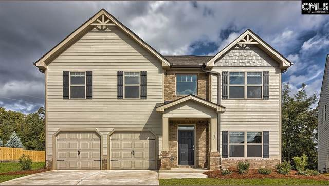105 Village View Way, Lexington, SC 29072 (MLS #483574) :: The Olivia Cooley Group at Keller Williams Realty