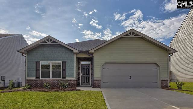 212 Village View Way, Lexington, SC 29072 (MLS #483578) :: The Olivia Cooley Group at Keller Williams Realty