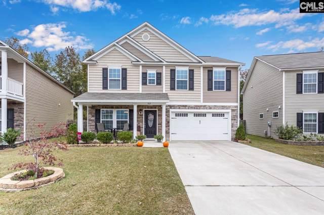 364 Longfellows Lane, Elgin, SC 29045 (MLS #483613) :: EXIT Real Estate Consultants