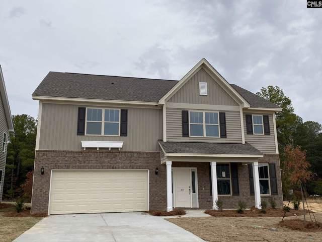 451 Stillwater Lane, Elgin, SC 29045 (MLS #483624) :: EXIT Real Estate Consultants