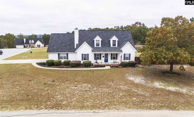 100 Chasan Hill Court, Lexington, SC 29073 (MLS #483796) :: Resource Realty Group