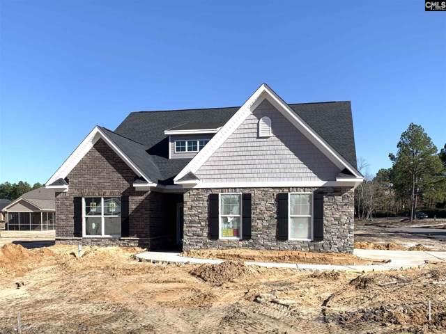 219 Doe Meadow Lane, Elgin, SC 29045 (MLS #483823) :: EXIT Real Estate Consultants