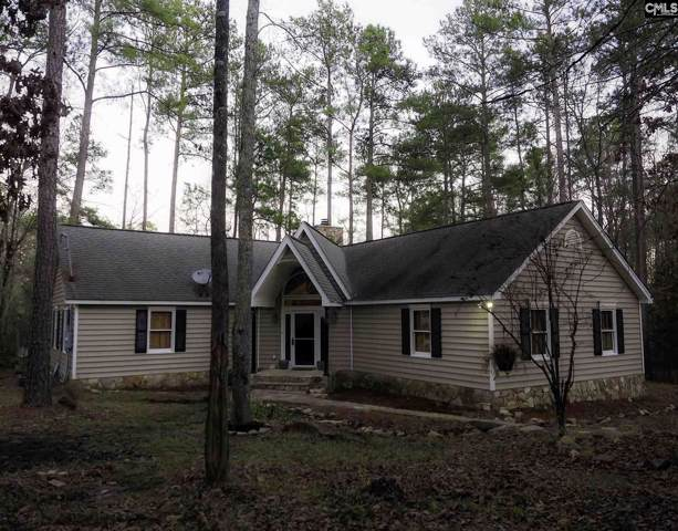 310 Old Rapids Road, Lexington, SC 29072 (MLS #485882) :: EXIT Real Estate Consultants