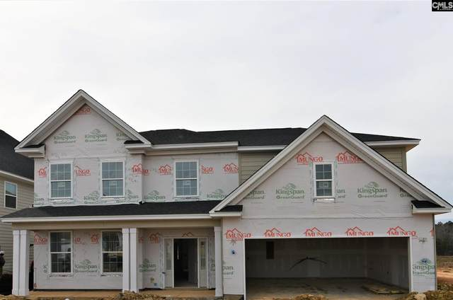 1317 Portrait Hill Drive, Chapin, SC 29036 (MLS #485944) :: The Meade Team