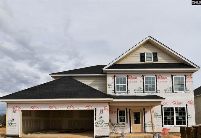 1312 Portrait Hill Drive, Chapin, SC 29036 (MLS #485946) :: The Meade Team