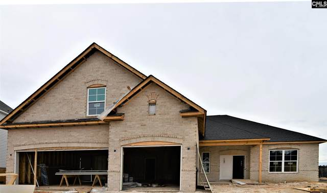 2323 Portrait Hill Drive, Chapin, SC 29036 (MLS #485949) :: The Meade Team