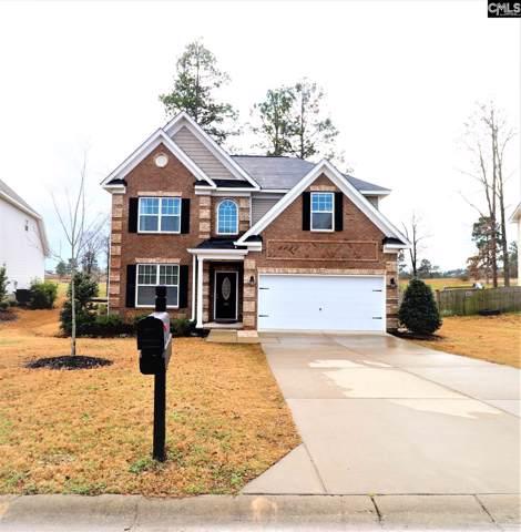162 Greenbank Drive, Lexington, SC 29073 (MLS #486254) :: Home Advantage Realty, LLC