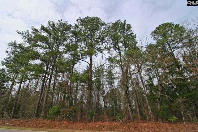 TBD Wagener Road, Wagener, SC 29164 (MLS #486792) :: EXIT Real Estate Consultants