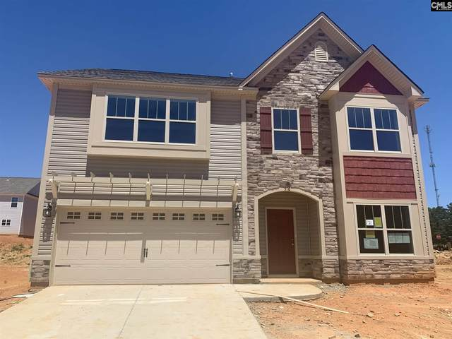 516 South Cobia Court, Irmo, SC 29063 (MLS #486874) :: EXIT Real Estate Consultants