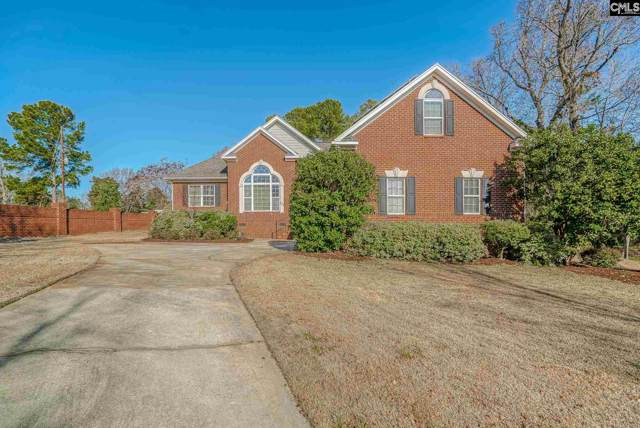 101 Jasmine Bay Lane, Chapin, SC 29036 (MLS #487002) :: Home Advantage Realty, LLC