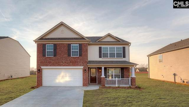 1232 Cypress Valley Drive, Chapin, SC 29036 (MLS #487565) :: EXIT Real Estate Consultants