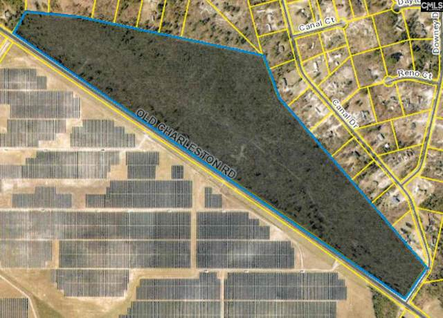 0 Old Charleston Road, Pelion, SC 29123 (MLS #487847) :: Home Advantage Realty, LLC