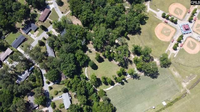 106 Townes Road, Columbia, SC 29210 (MLS #488040) :: Home Advantage Realty, LLC