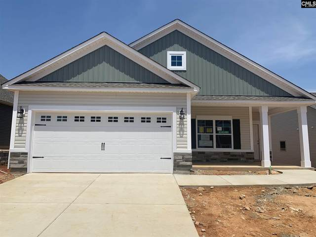1015 Old Town Road, Irmo, SC 29063 (MLS #488500) :: EXIT Real Estate Consultants