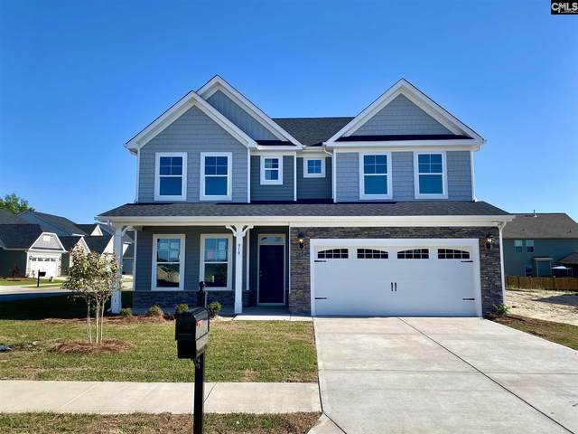 919 Taramore Lane, Lexington, SC 29072 (MLS #488586) :: EXIT Real Estate Consultants