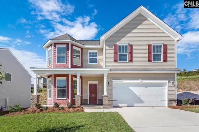 153 Sunny View Lane, Lexington, SC 29073 (MLS #488781) :: Resource Realty Group