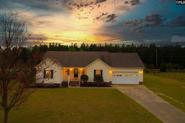 301 Whiteplains Place, Gilbert, SC 29054 (MLS #488914) :: The Meade Team