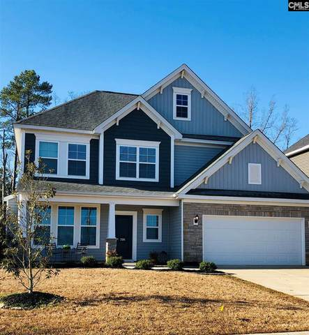 306 Hollow Cove Road, Chapin, SC 29036 (MLS #489018) :: EXIT Real Estate Consultants