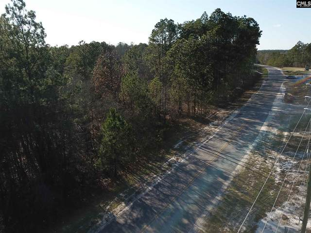 1833 Dry Branch Road, Lugoff, SC 29078 (MLS #489204) :: The Latimore Group