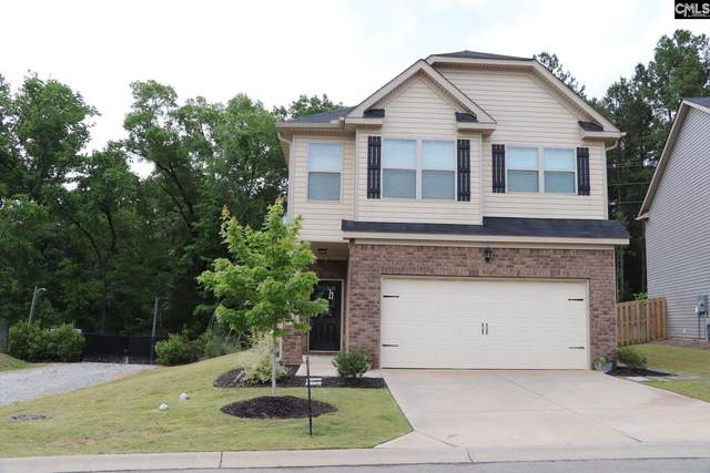248 Bickley View Court, Chapin, SC 29036 (MLS #490824) :: EXIT Real Estate Consultants