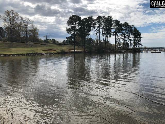 151 Water Links Drive, Chapin, SC 29036 (MLS #491131) :: EXIT Real Estate Consultants