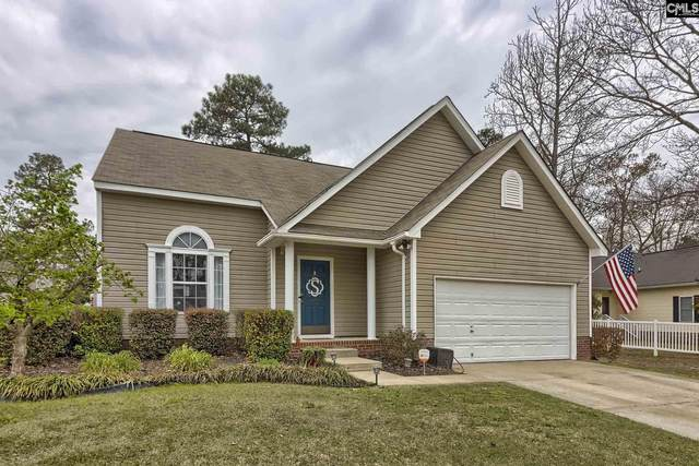 168 Stoney Pointe Drive, Chapin, SC 29036 (MLS #491138) :: Home Advantage Realty, LLC