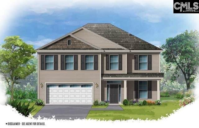 405 Woolbright Court, Chapin, SC 29063 (MLS #492138) :: The Latimore Group