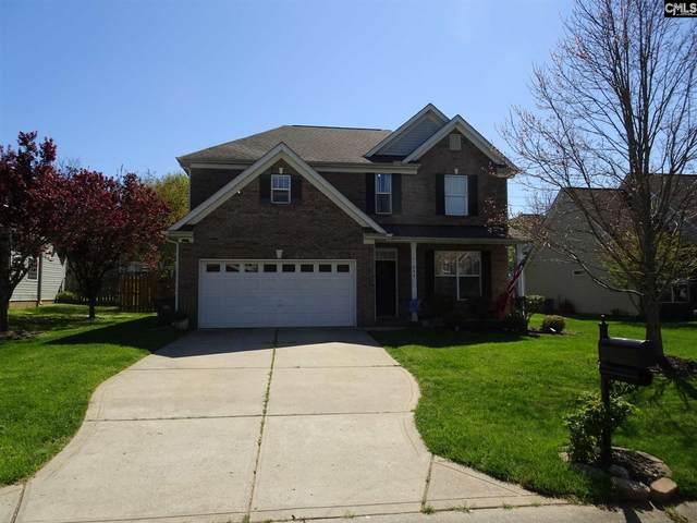 511 Gillcreek Court, Clover, SC 29710 (MLS #492314) :: EXIT Real Estate Consultants