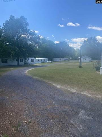 120 First Creek Road, Gaston, SC 29053 (MLS #493087) :: The Meade Team
