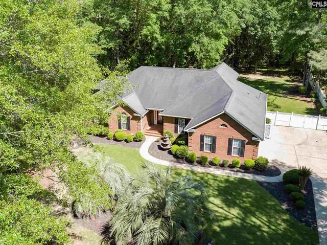 213 Ashley Oaks Drive, Lexington, SC 29072 (MLS #493355) :: EXIT Real Estate Consultants