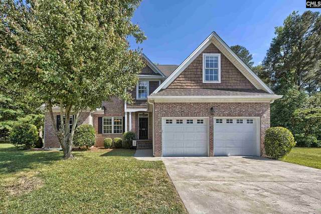 206 Spoonbill Court, Chapin, SC 29036 (MLS #494139) :: Loveless & Yarborough Real Estate