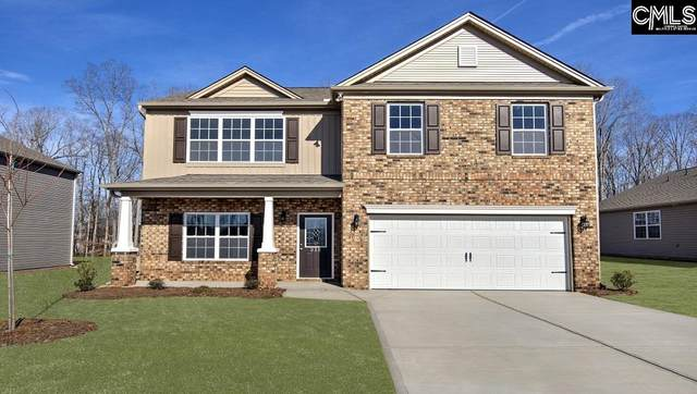 1125 Cherry Meadow Lane, Chapin, SC 29036 (MLS #494464) :: Fabulous Aiken Homes
