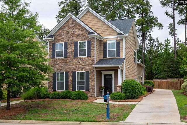 753 Moonsail Circle, Chapin, SC 29036 (MLS #495030) :: EXIT Real Estate Consultants