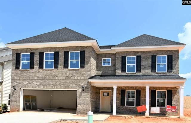 471 Malachite Drive, Chapin, SC 29072 (MLS #495099) :: Fabulous Aiken Homes