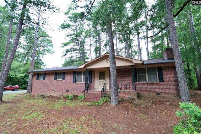 133 Piney Grove Road, Columbia, SC 29210 (MLS #495823) :: Loveless & Yarborough Real Estate