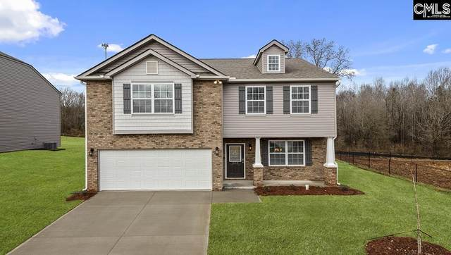 453 Tulip Way, Lexington, SC 29072 (MLS #497013) :: The Latimore Group
