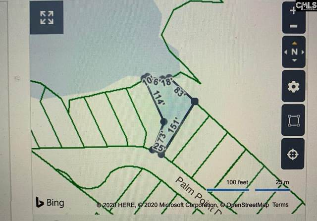 164 Palm Point Drive, Columbia, SC 29212 (MLS #497055) :: EXIT Real Estate Consultants