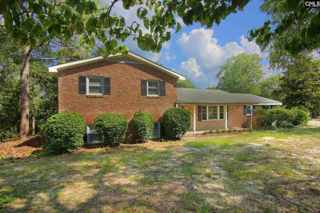 2325 Old Satchelford Road, Columbia, SC 29223 (MLS #497706) :: EXIT Real Estate Consultants